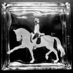 Extended Trot Horse Horseriding